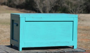 teal trunk