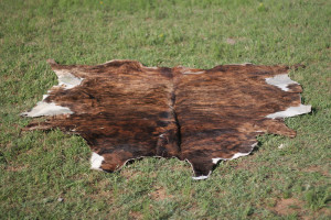 black and brown cow skin rug