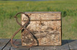 bark box and ice tongs