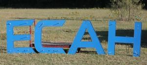 ecah letters