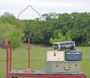 suitcases and bird cage stand