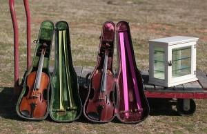violins and display case