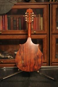 mandolin back